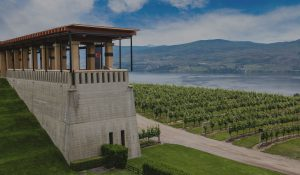 Teehouse Wine Tours - Select Your Tour
